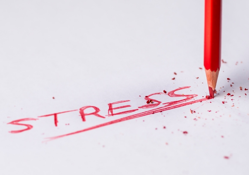 Stress – the good, the bad and the ugly